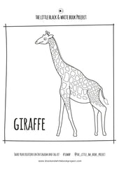 giraffe illustration to colour in