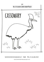 cassowary colouring sheet