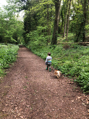 toddler leading a dog in the woods
