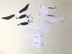 bird templates cut out