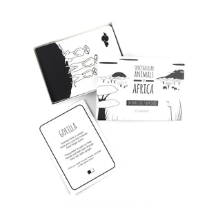 Baby flash cards - Africa animals - The Little Black & White Book Project