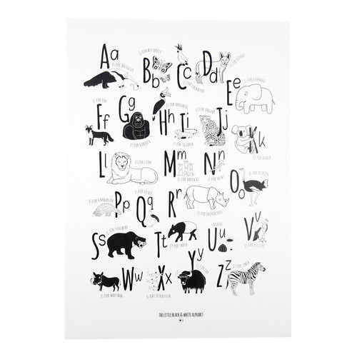 Animal Alphabet illustrations A3 Print