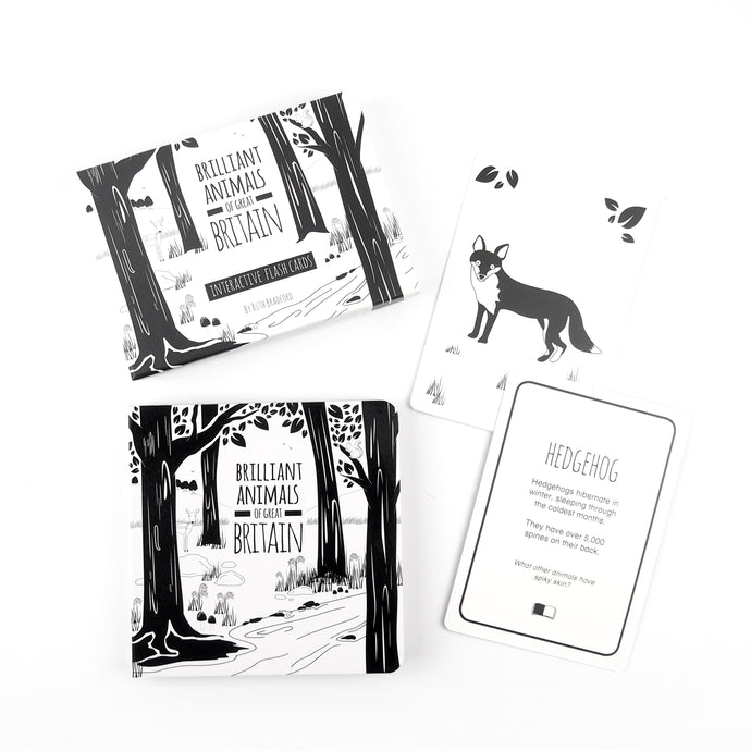 Baby book and flash card gift set - The Little Black & White Book Project