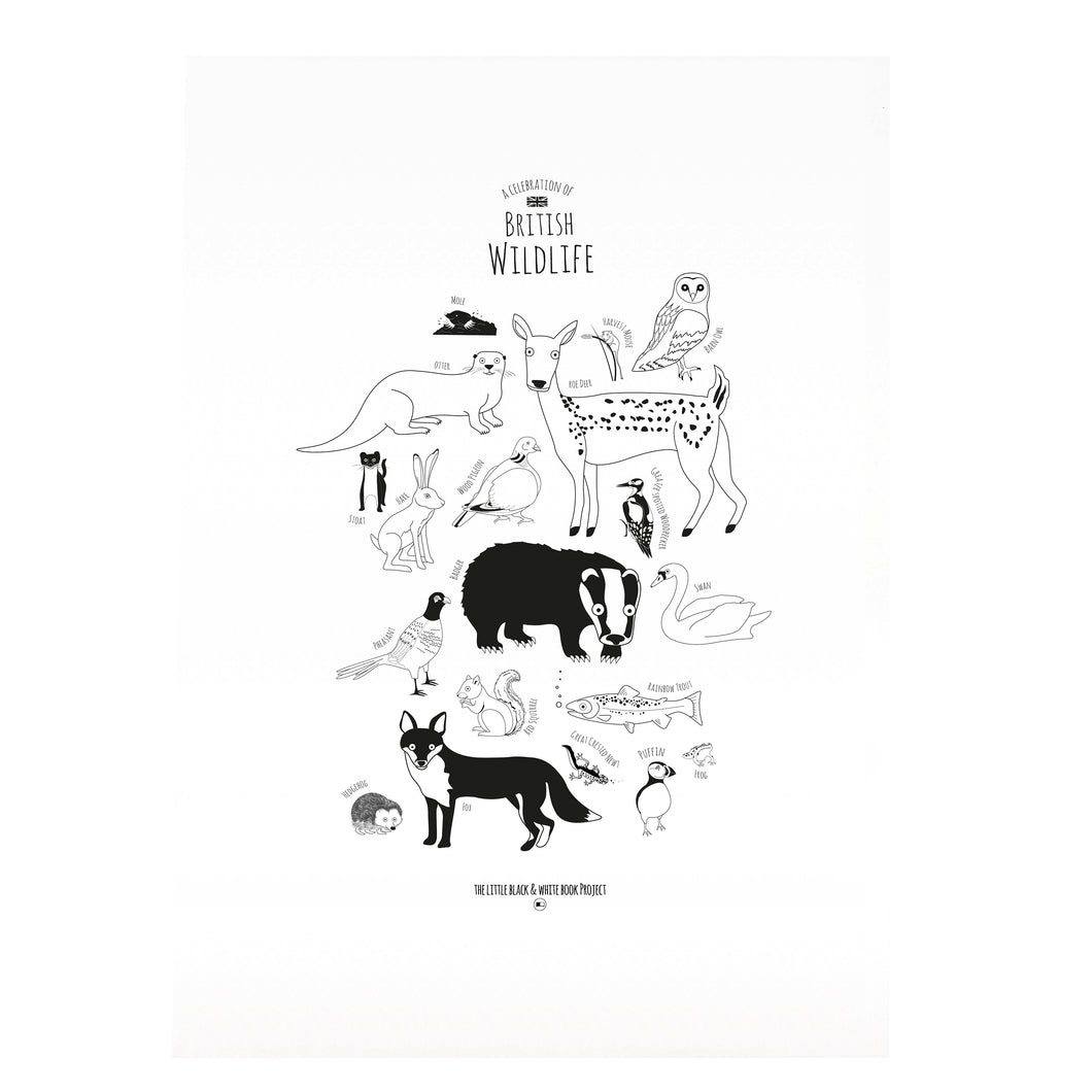 British Animals illustration A3 Print