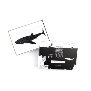 Ocean animals flash card set