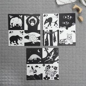 Set of 3 square prints animals of Southeast Asia - The Little Black & White Book Project