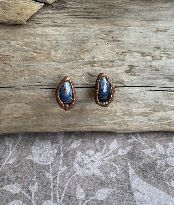 Mussel Shell Earrings, Shell Studs, Copper Electroformed, Beachcomber Jewelry, Mermaid Jewelry, Alaskan Gift, Nature Jewelry, Made in Alaska