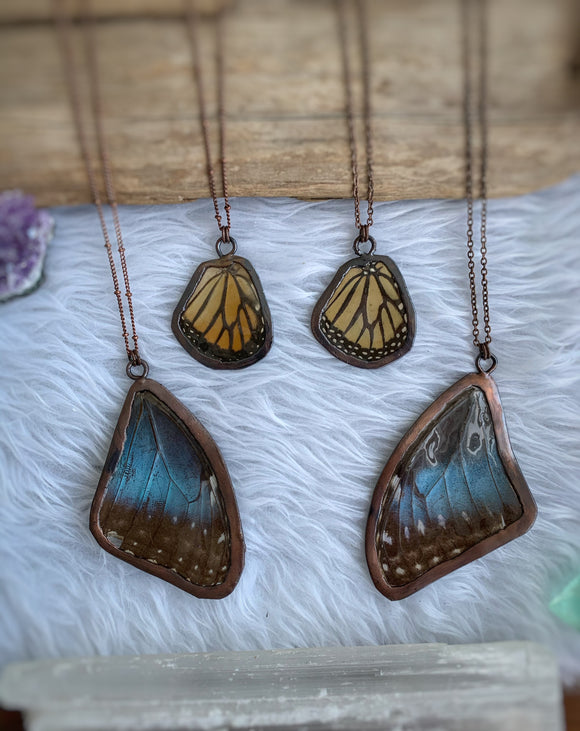 Real Butterfly Wing Necklace // Monarch & Blue Morpho
