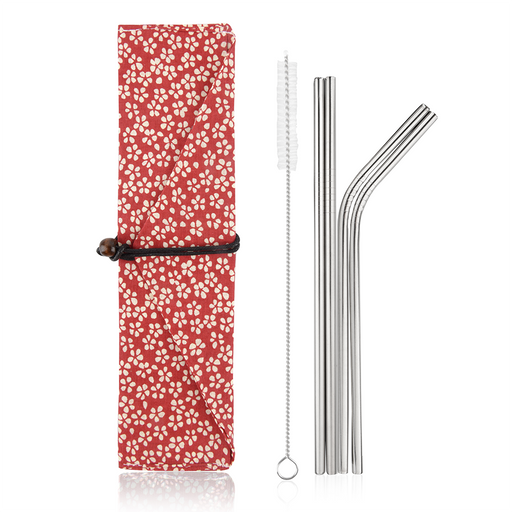 Simply Eco Stainless Steel Reusable Metal Straws (red flowers)