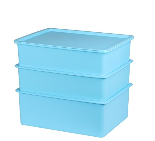 10 Grid Plastic Organizer Box Underwear socks bra Plastic Storage Box Storage Box (Green Colour))