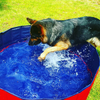 FOLDABLE DOG POOL - SALES PROMOTION 50% OFF 🔥🎁