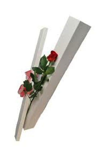 V11 Single Red Rose Boxed