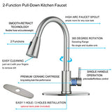 Stainless Steel Pull Down Kitchen Faucet