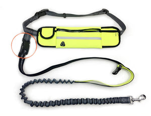 Adjustable Hand Free Dog Leash