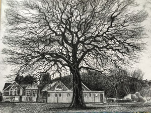 Original graphite drawing showing a fabolous tree in the grounds of Ffynnon Taf Primary School, Taff's Well