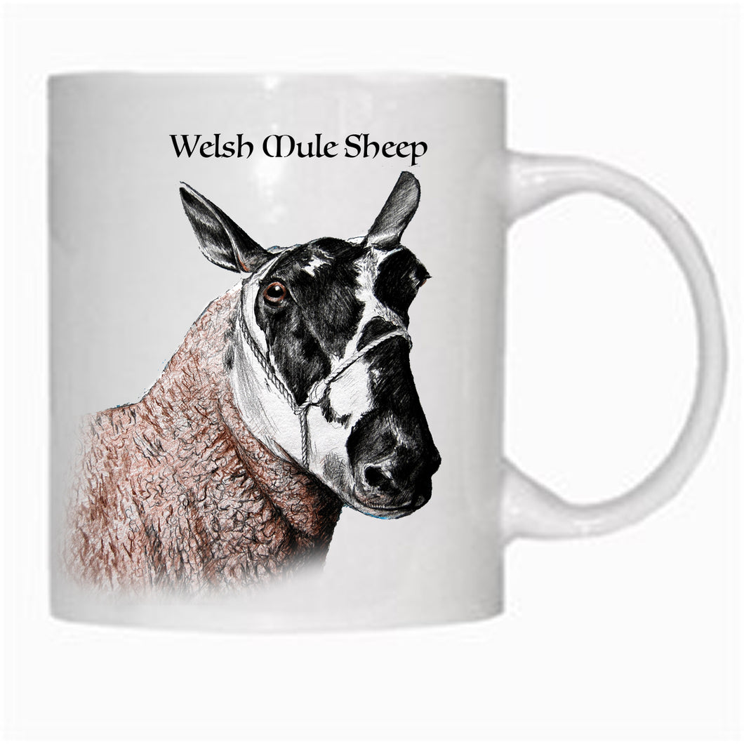 Gift - Mug - Welsh Mule Sheep