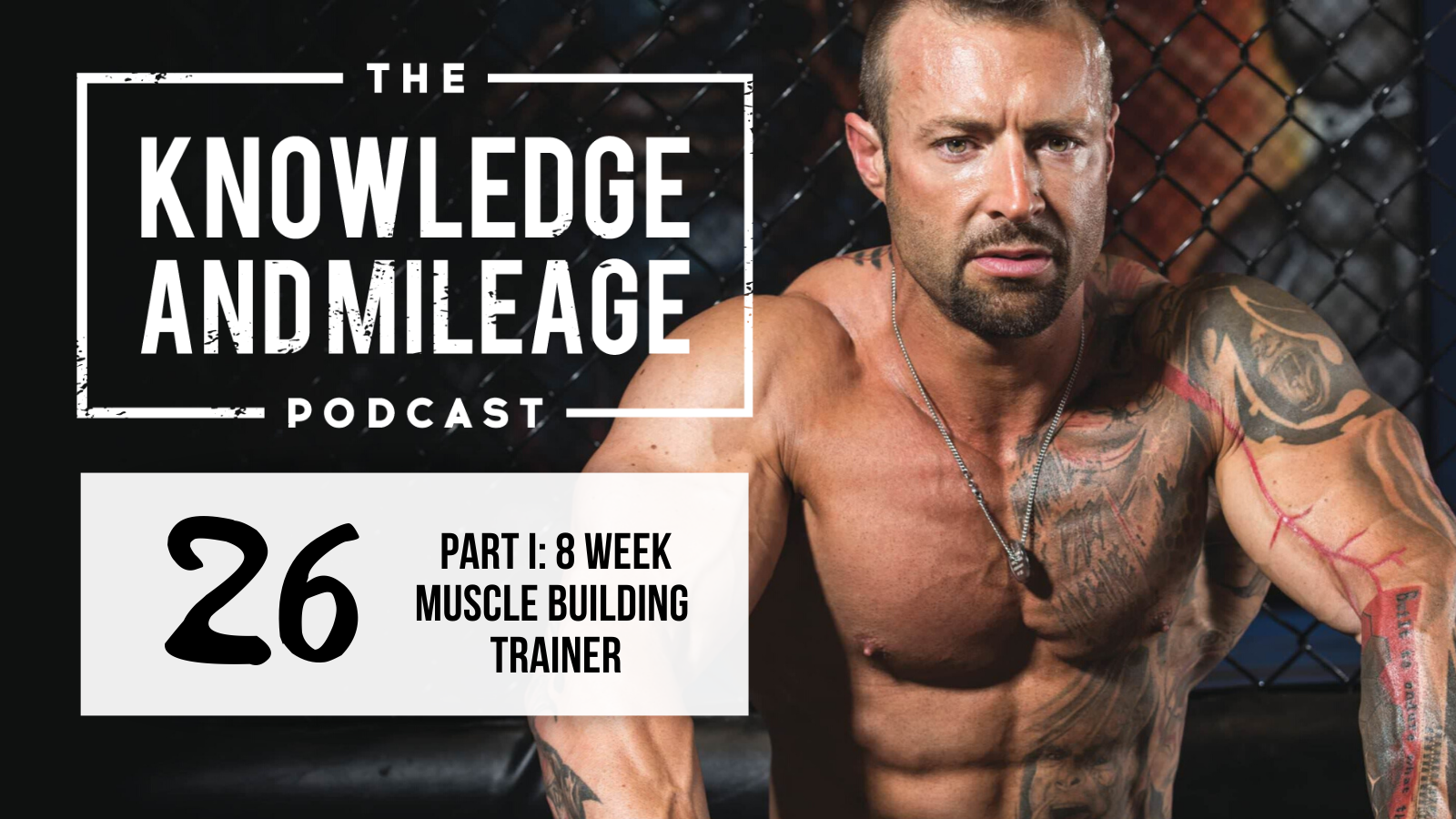 EP 26: Part I: Tips for the New 8-Week Muscle-Building Video Trainer