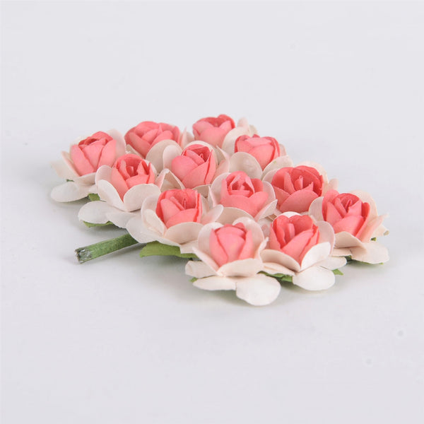 Paper Rose Flowers (12x12) Ivory w. Coral( 12 Paper Flowers )