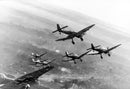 Ju 87 D's over the Eastern Front, December 22, 1943