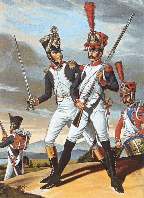 Napoleonic Wars French Line Infantry 1810