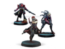Infinity Beyond Wildfire Expansion Pack Shasvastii Figures
