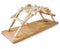 Leonardo Da Vinci Bridge Wooden Kit By Pathfinders Design
