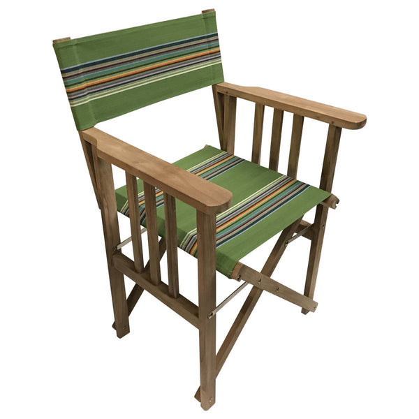 Punting Striped Directors Chair