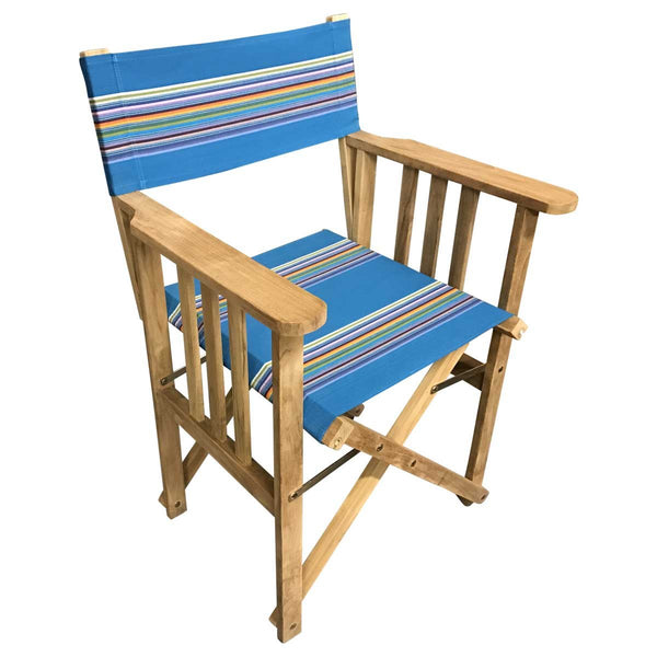 Swimming Striped Directors Chair