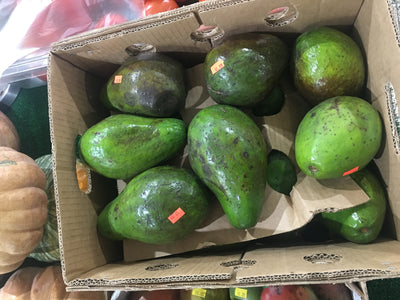 Avocados -5 Pieces