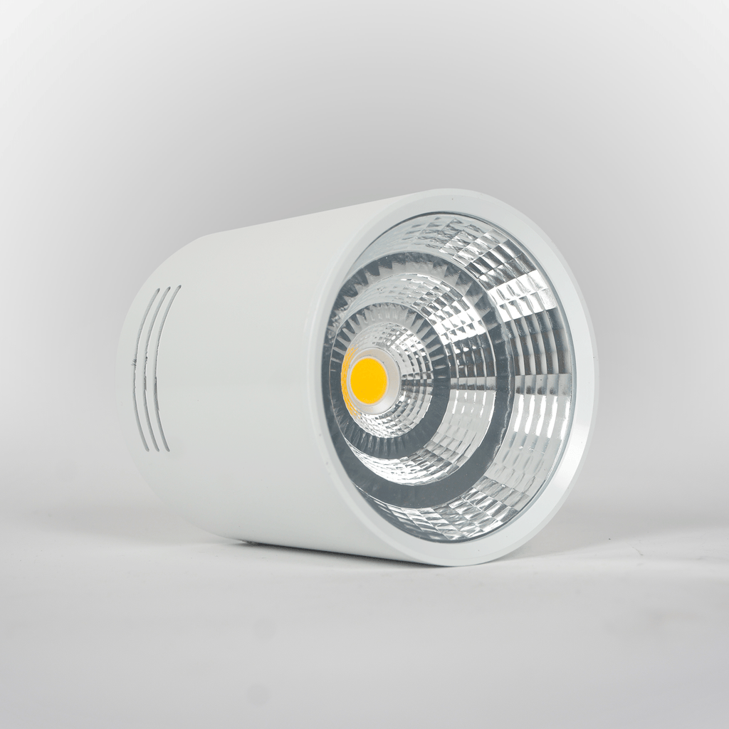 Surface Mounted Downlight COB Light 10