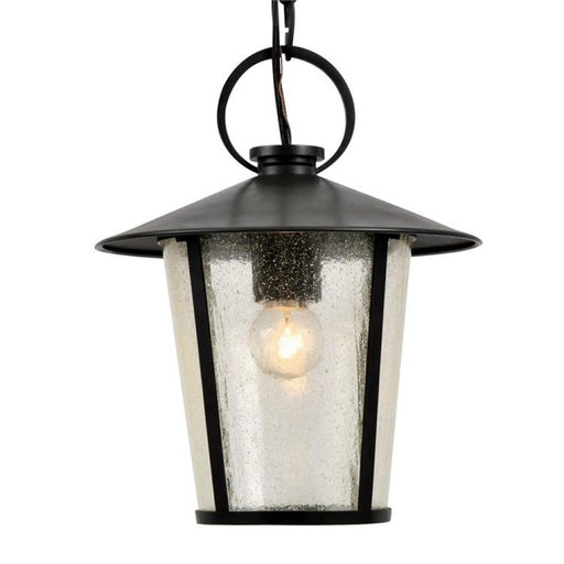 Crystorama Andover Outdoor 1 Light Matte Black Chandelier | AND-9203-SD-MK