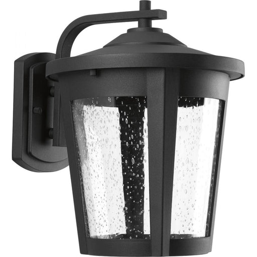 Progress East Haven Collection One-Light Large LED Wall Lantern | P6079-3130K9
