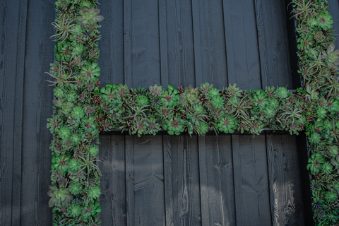 Up Close looks at Custom Built Vertical Wall Succulent Planter made in an 'H' for the Hill Family Winery by Lee Display
