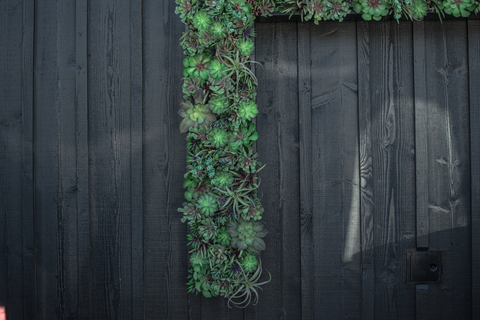 Close up Custom Built Vertical Wall Succulent Planter made in an 'H' for the Hill Family Winery by Lee Display