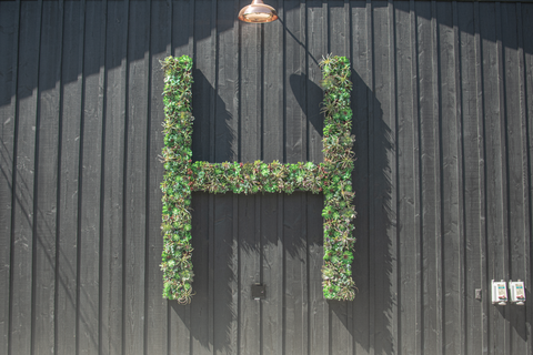 Custom Built Vertical Wall Succulent Planter made in an 'H' for the Hill Family Winery by Lee Display