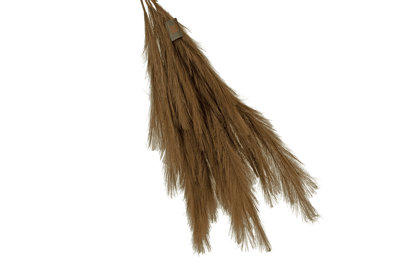 Dark Brown Pampas Grass Sprays sold by Lee Display