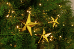 Gold Star Picks Decorations on Christmas Tree Sold by Lee Display 2