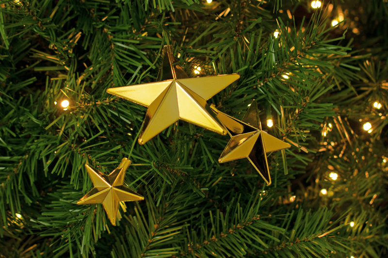 Gold Star Picks Decorations on Christmas Tree Sold by Lee Display 3