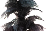Black Ostrich Feather Tree