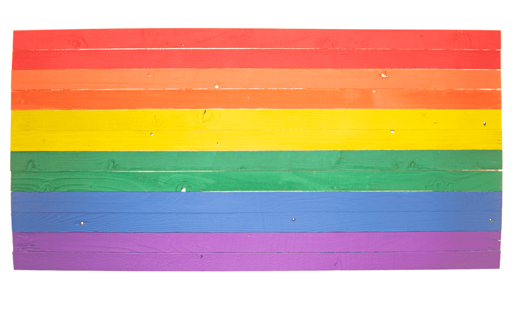 Lee Display Flag Rainbow Flags