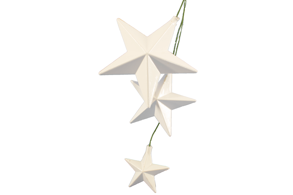 Lee Display Picks White Star Pick Ornaments