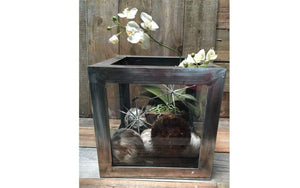 Lee Display Terrarium Decorative Steel Terrarium