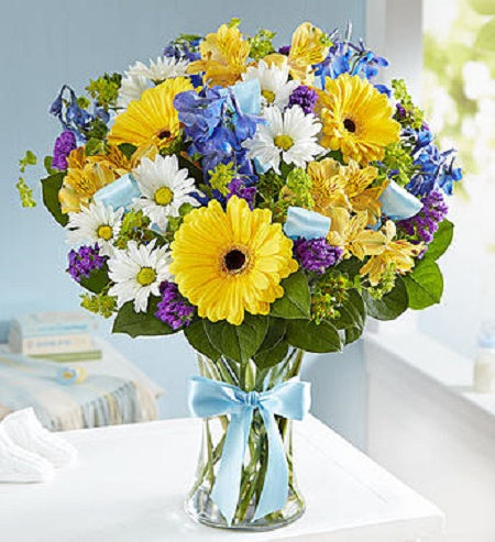Send this perfect arrangement to celebrate a magical occasion of welcoming a precious new baby boy into the world. A bright bouquet of yellow gerbera daisies, yellow alstroemeria, blue delphinium, white daisy poms