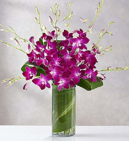tropical dendrobium orchids & exotic greens will impress those who enjoy the finer things in life