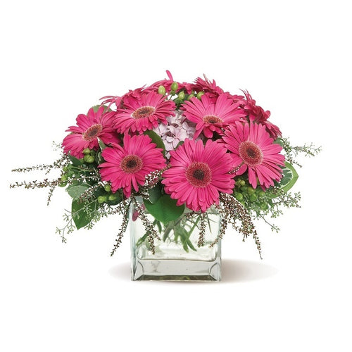 bright bouquet of pink gerberas, accented with a mix of greenery and pink blooms.