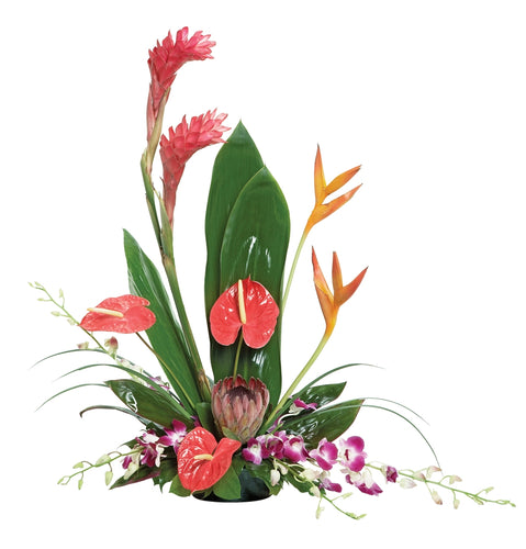 Head to the tropics with this spectacular and exotic display of orchids, birds of paradise, glossy anthurium