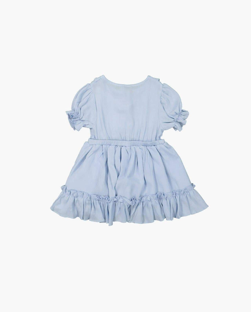 [Out of Stock] Sheer Sleeve Picnic Dress