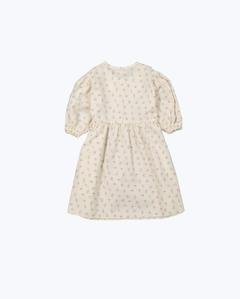 [Out of Stock] Petite Lace Dress