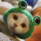 Hand-knitted Frog Hat