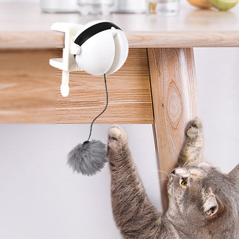 Lifting Cat Teaser Ball